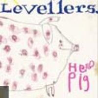 The Levellers en concert
