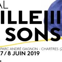 Festival L'paille A Sons