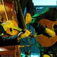 Clair de Lune trio en concert