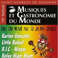 Festival Musiques et Gastronomie du Monde
