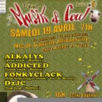 Festival Music & Cow
