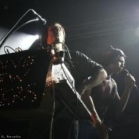 Naive New Beaters en concert