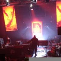 Natty Bass en concert