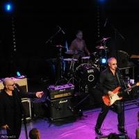 Nine Below Zero en concert