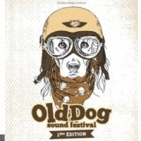 Old Dog Sound Festival