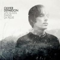 Olivier Depardon en concert