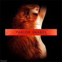 Parlor Snakes en concert