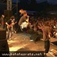 Patatraa en concert