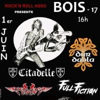 Festival rock n bois
