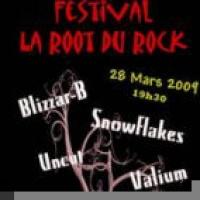 Festival Root du Rock