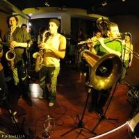 Samenakoa en concert