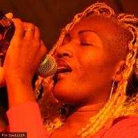 Sayon Bamba en concert