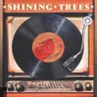 Shining Trees en concert