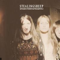 Stealing Sheep en concert