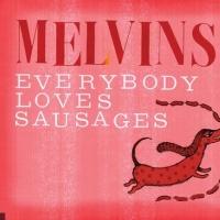 The Melvins en concert