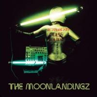 The Moonlandingz en concert