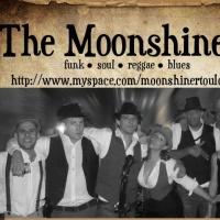 The Moonshiners en concert