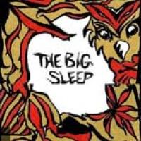 Big Sleep en concert