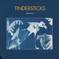 Tindersticks en concert