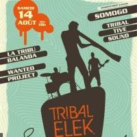 Tribalélék Festival
