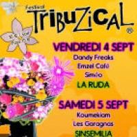 Festival Tribuzical