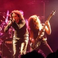 Veils of Perception en concert