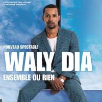 Waly Dia en concert