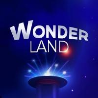 Wonderland, Le Spectacle en concert