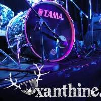 Xanthine en concert