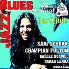 Jazz and blues festival de Léognan