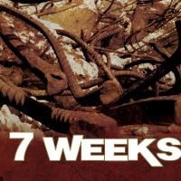 7 Weeks en concert