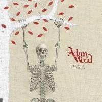 Adam Wood (FR) en concert