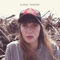 Aldous Harding en concert