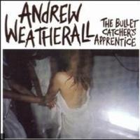 Andrew Weatherall en concert