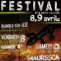 Festival des Arts Hachés