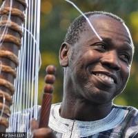 Ballaké Sissoko en concert