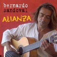 Bernardo Sandoval en concert