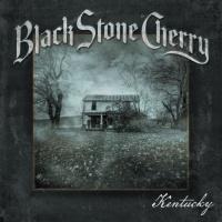 Black Stone Cherry en concert