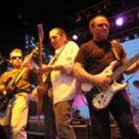 Blue Öyster Cult en concert