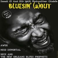 Bluesin'(a)out