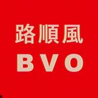 Bon Voyage Organisation en concert