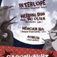 Cacophonight