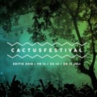 Cactus Festival