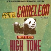 Caméléon Festival
