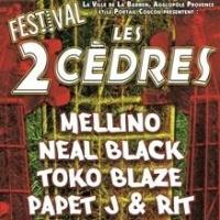 Festival des 2 Cédres
