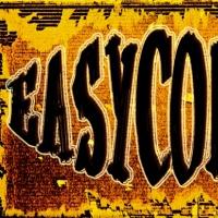 Easycombo en concert