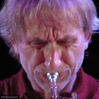 Erik Truffaz en concert