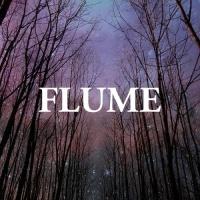 Flume en concert