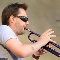 Guillaume Grenard en concert