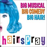 Hairspray en concert